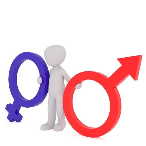 equality-2110594_1280